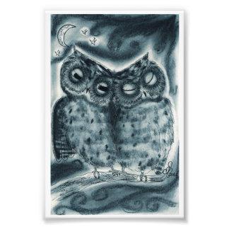Owl Love Photo Art