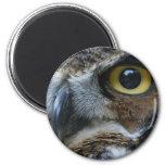 Owl Magnet Magnet