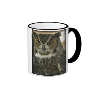 Owl Mug Two-Image Template