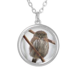 Owl Necklace - Northern Pygmy-Owl