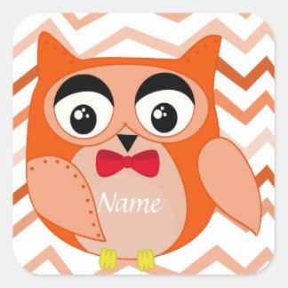 Owl nursery illustration boys square sticker