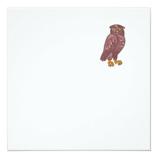 Owl Observing Looking Drawing Card