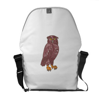 Owl Observing Looking Drawing Courier Bag
