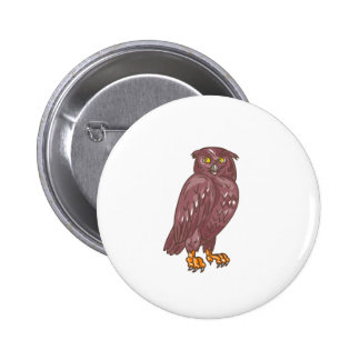 Owl Observing Looking Drawing Pinback Button