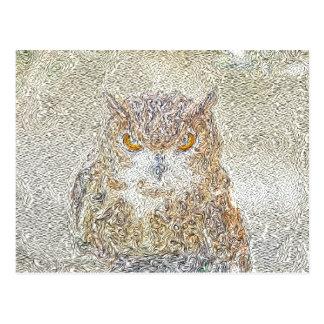 Owl Observing Postcard