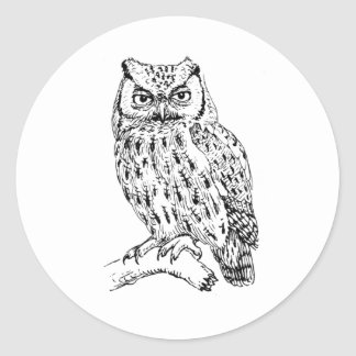 owl of sulawesi classic round sticker