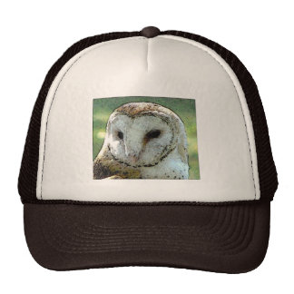 Owl Oh Owl Trucker Hat