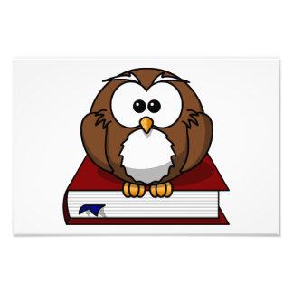 Owl on a book cartoon photograph