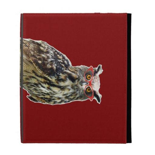owl on an 8 ball iPad folio cases