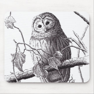 owl on branch pen & ink bird drawing mouse pad