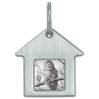 owl on branch pen & ink bird drawing pet name tag
