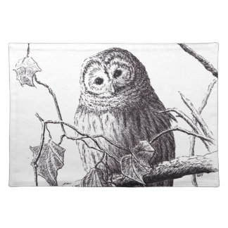 owl on branch pen & ink bird drawing placemat