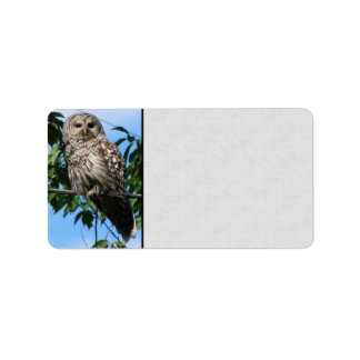 Owl On Wire Label