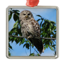 Owl On Wire Metal Ornament