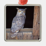 Owl perched in a window square metal christmas ornament