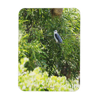 Owl perching on a tree vinyl magnets