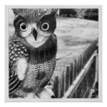 Owl Perching Poster