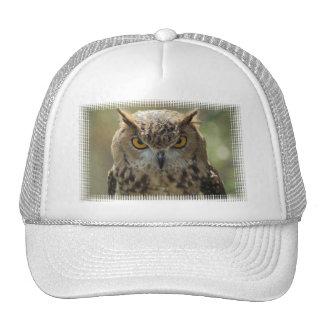 Owl Photo Baseball Hat