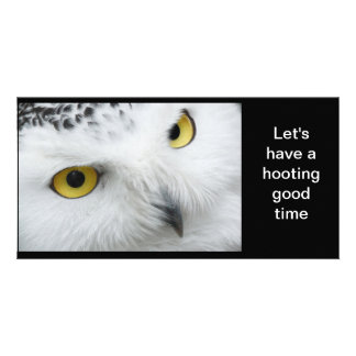 owl photo birthday note card