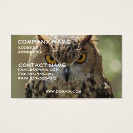 Owl Photo Business Card