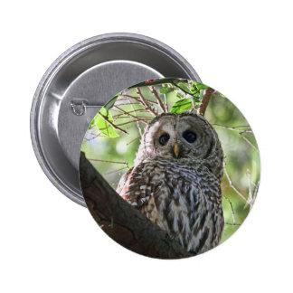 Owl Photo Button