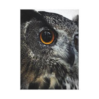 Owl Photo Canvas Print