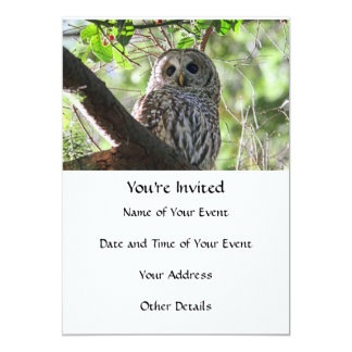 Owl Photo Card