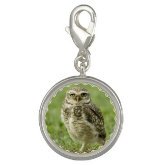 Owl Photo Charms