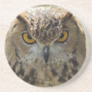 Owl Photo Coasters