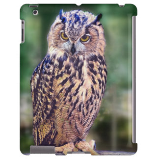 Owl Photo iPad Barely There Case