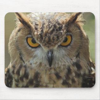 Owl Photo Mouse Pad