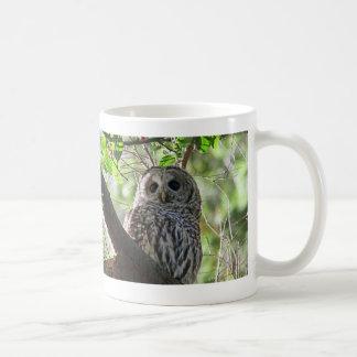 Owl Photo Mug
