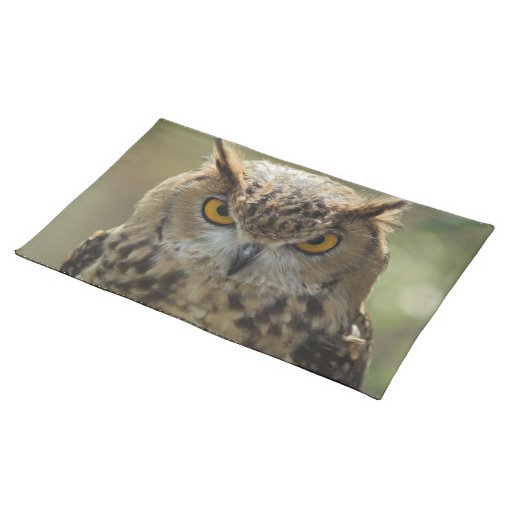 Owl Photo Placemat Cloth Placemat