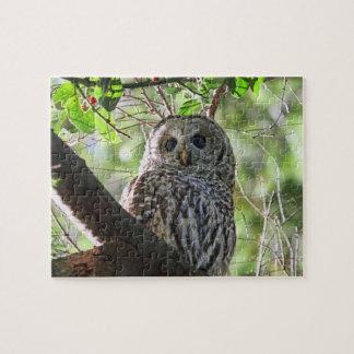 Owl Photo Puzzle