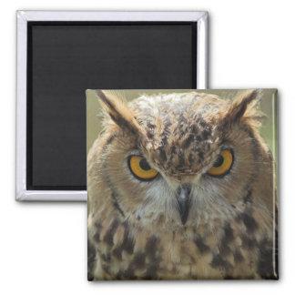 Owl Photo Square Magnet