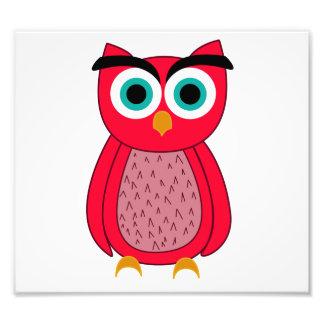 Owl Art Photo