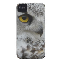 Owl Photograh Close Up iPhone 4 Case-Mate Case