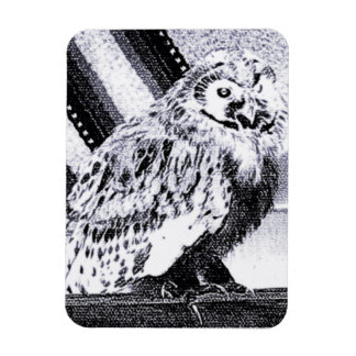 Owl Picture Magnet