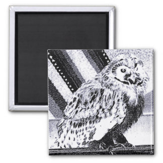 Owl Picture 2 Inch Square Magnet