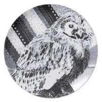 Owl Picture Melamine Plate