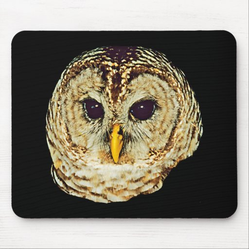 Owl Picture Mousepad