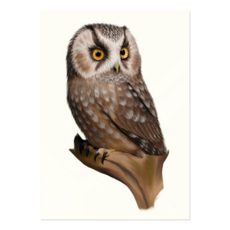 Owl Portrait ACEO Art Trading Cards Large Business Card