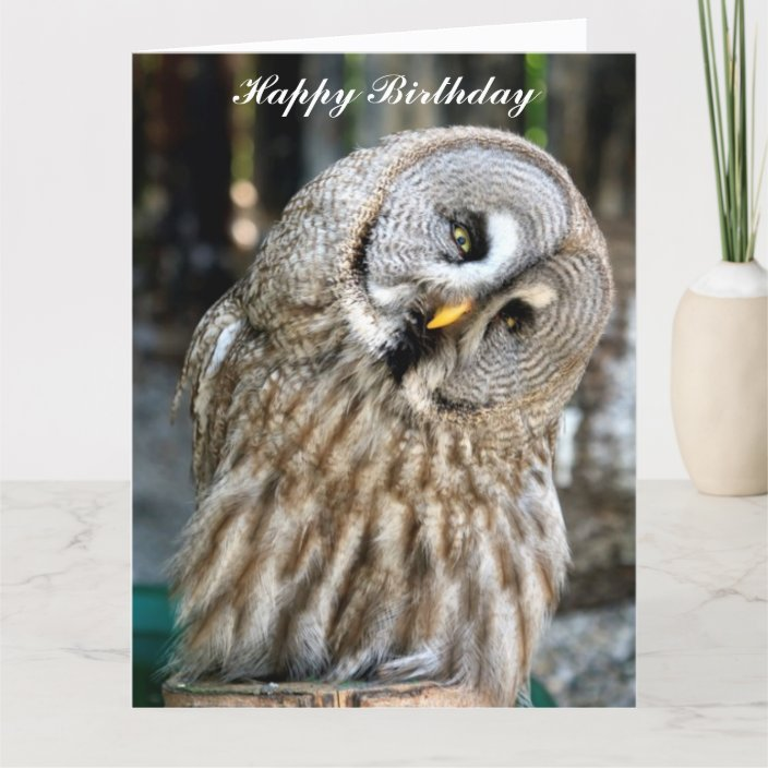 Owl Portrait Beautiful Custom Birthday Card Zazzle Com