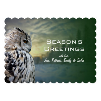 Owl portrait on winter forest background card