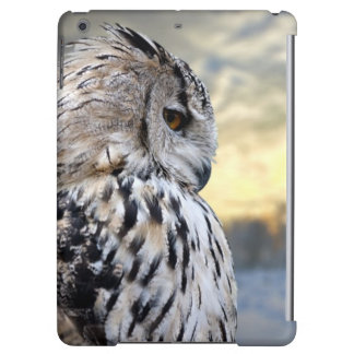 Owl portrait on winter forest background iPad air covers