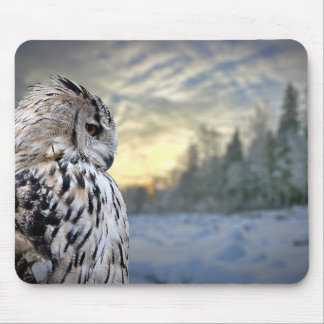 Owl portrait on winter forest background mouse pad