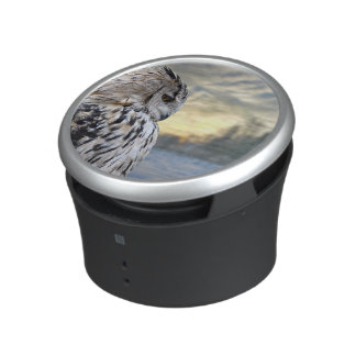 Owl portrait on winter forest background speaker