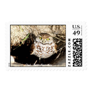 Owl. Postage Stamps