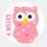 Owl Pregnancy Sticker Round Sticker