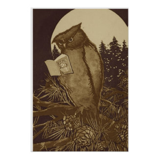 Owl Reading a book by Moonlight Poster